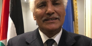 Commission des Affaires Étrangères Française. الصحراء الغربية