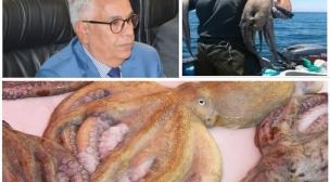 أخطبوط الطنطان في يد أخطبوط الداخلية
